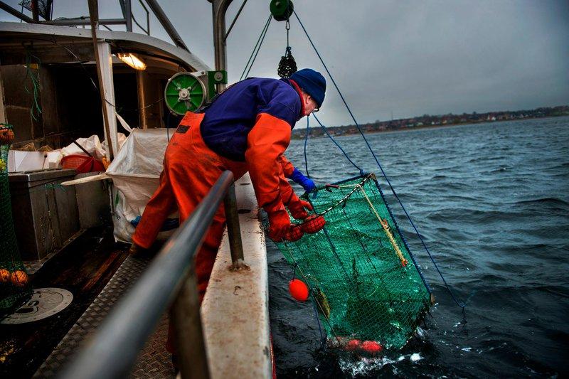 Pêche sur la Côte Ouest