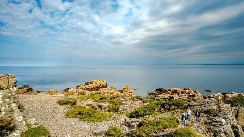Hovs Hallar Nature Reserve