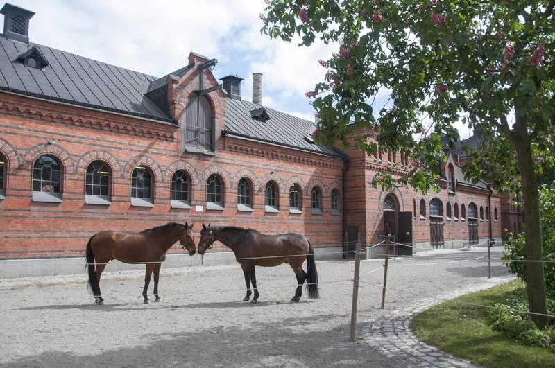 The Royal Stables, Stockholm