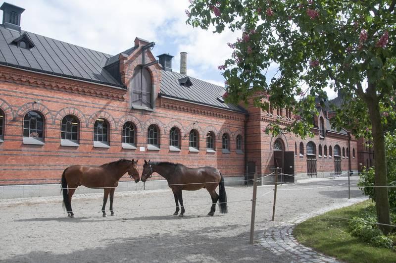 Die königlichen Ställe, Stockholm
