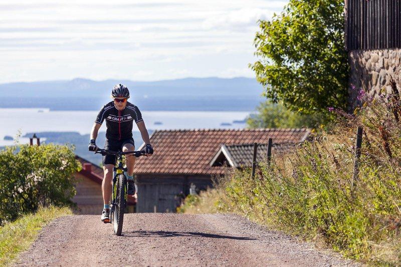 Dalécarlie, Suède
