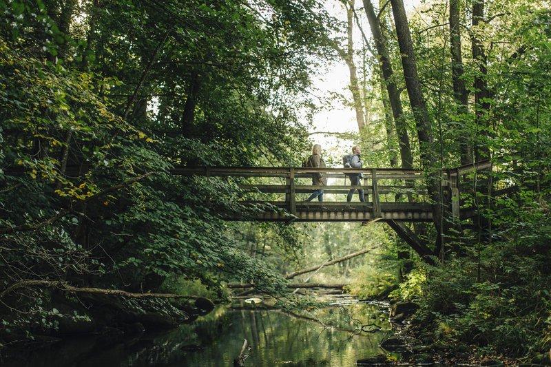 Skåneleden trail