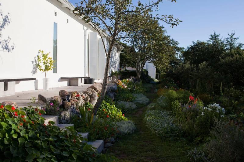 The Cherry Garden, Gotland